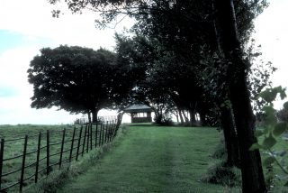 Top Walks at the Royal Albert, leading up to the Bandstand. It was around here that Stan and the others went camping in the 1950s.  | Courtesy of Nigel Ingham